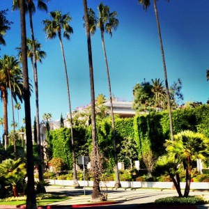 Tours of Hollywood and Beverly Hills Celebrity Homes