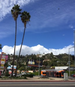 Hollywood Hills Tours