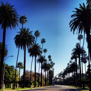 Booking Los Angeles and Beverly Hills Tours For Summer