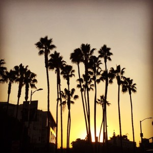 Photo Opportunities Available on Private Los Angeles Tours