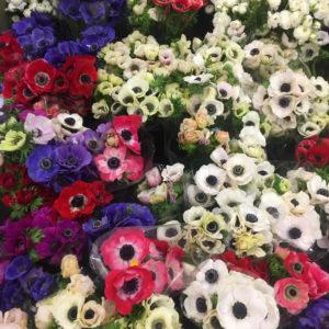 Flower Market DTLA