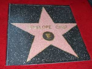 Celebrity Stars along The Hollywood Walk of Fame