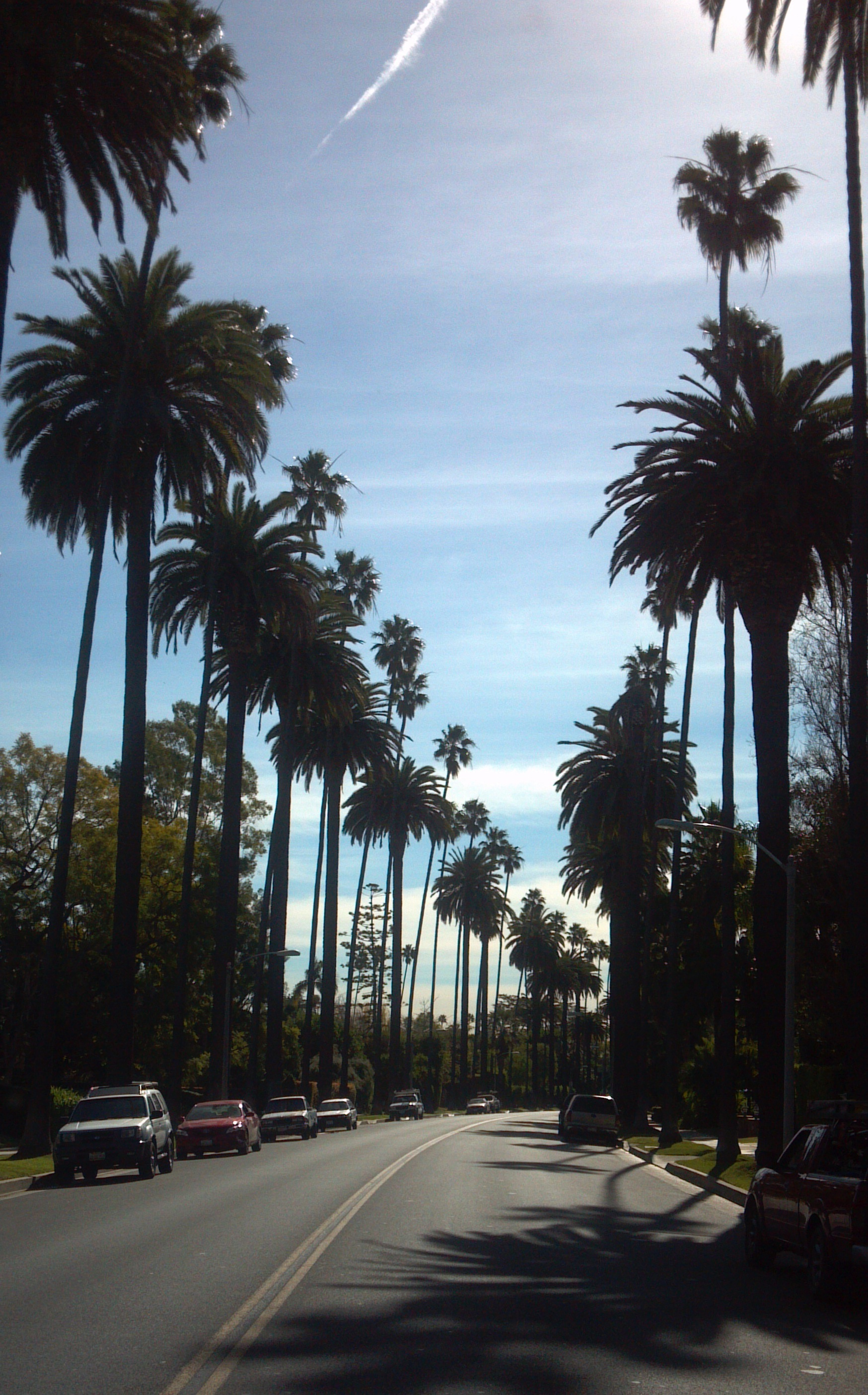 Sightseeing tours of Los Angeles