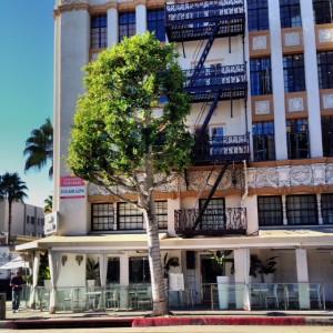 Villa Blanca by Lisa Vanderpump, one of the best Beverly Hills hotels