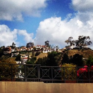 Visit Los Angeles and Tour the Hollywood Hills