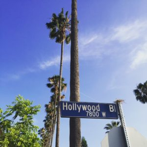 Visiting Los Angeles in the Fall