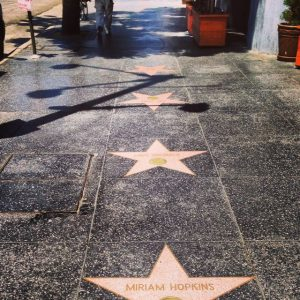 Stars Along The Walk of Fame