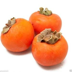 Persimmons at Santa Monica Restaurant Week