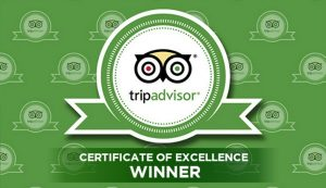 Glitterati Tours is the #1 Rated Tour Company on TripAdvisor for Beverly Hills