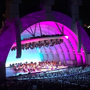 Hollywood Bowl Shell